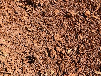 soilsupplyfilldirtsmall